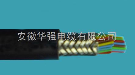 DJFFRP1 10*3*1高温仪表电缆