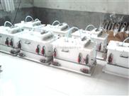 阳泉电解法二氧化氯发生器怎么看都可爱!