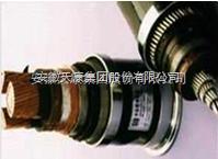 BPYJVTP2-3*10+1*6天康变频电缆