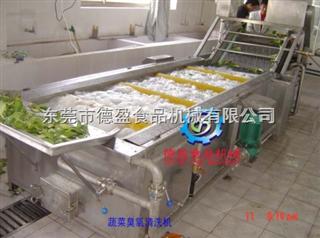 DY-2500果蔬清洗去杂机