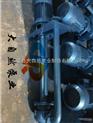 25FY-16A耐腐蚀液下泵 熔盐液下泵 高温液下泵