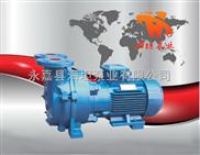 水环式真空泵SKA