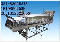 自熟一次成型河粉凉皮机220v电压供应