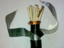 VV22-3*4+1*2.5电力电缆