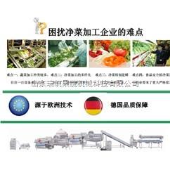 小型果蔬净菜加工流水线设备