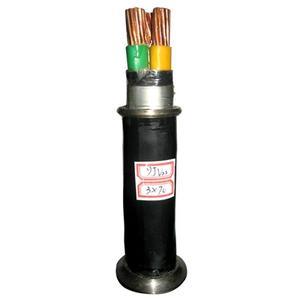 NH-VV 3*4+1*2.5 耐火电缆