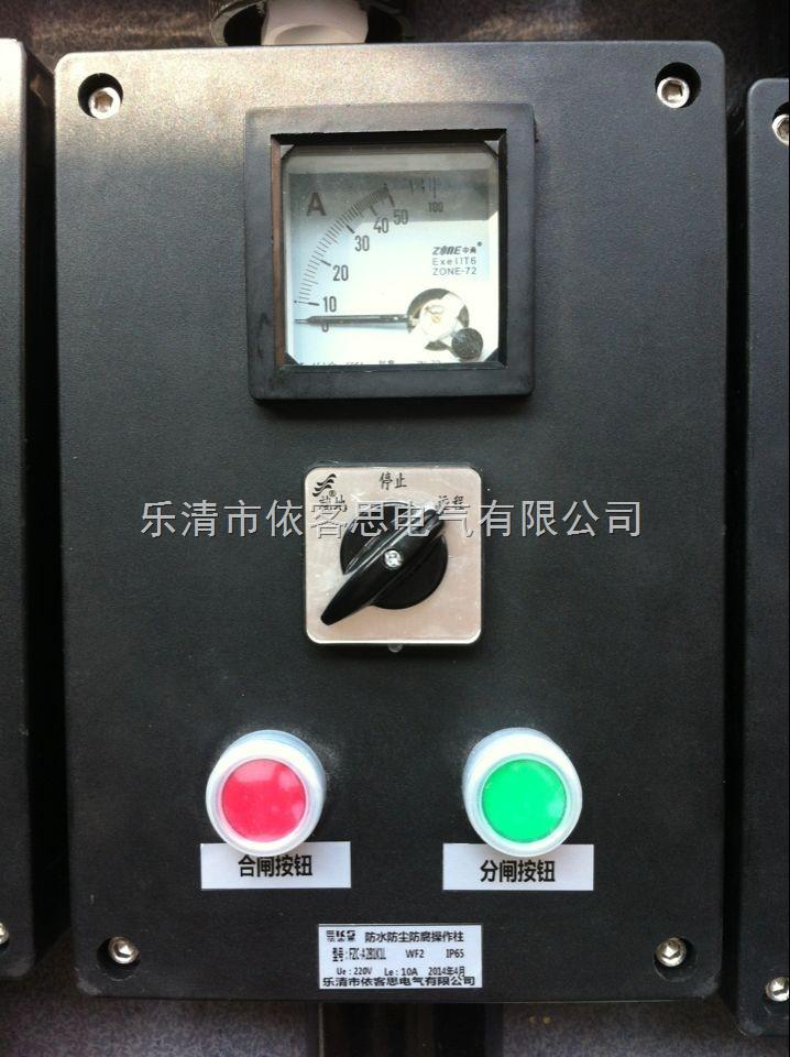 LNZ防水防尘防腐操作柱LNZ-B2A1L