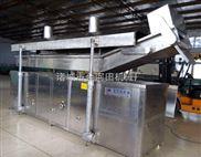 5000型电加热全自动油炸生产线
