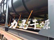 卧式楔型空心桨叶干燥机