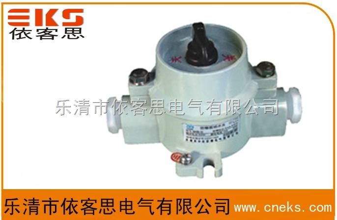乐清依客思优质BZM-10铝壳10A220V防爆照明开关WF1