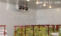食品冷藏保鲜的原理和方法,食品的冷藏条件,上海浩爽制冷