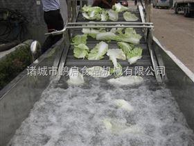 气泡式蔬菜清洗机