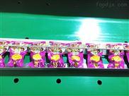 DZ-1000-清凉瓜子真空包装机  海诺滚动式真空包装机生产厂家