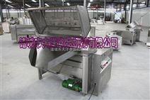 自动出料油炸机、油炸机供应厂家-山东大洋公司