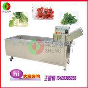 QX-22-蔬果加工机械 豪华型臭氧消毒气泡洗菜机  蔬菜清洗机