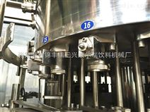 小型瓶装碳酸饮料生产线含气饮料灌装机