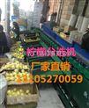 XGJ-NM-凯祥柠檬分选机-水果分级机-高品质分选机