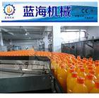 葡萄汁饮料生产线