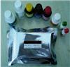 人靶向核糖核酸酶(TR)ELISA试剂盒说明书厂家
