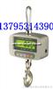 OCS-XZ-GGCOCS-XZ-GGC电子吊钩称/小称量吊秤