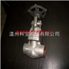 Z61H-1500LB F304高压锻打焊接闸阀